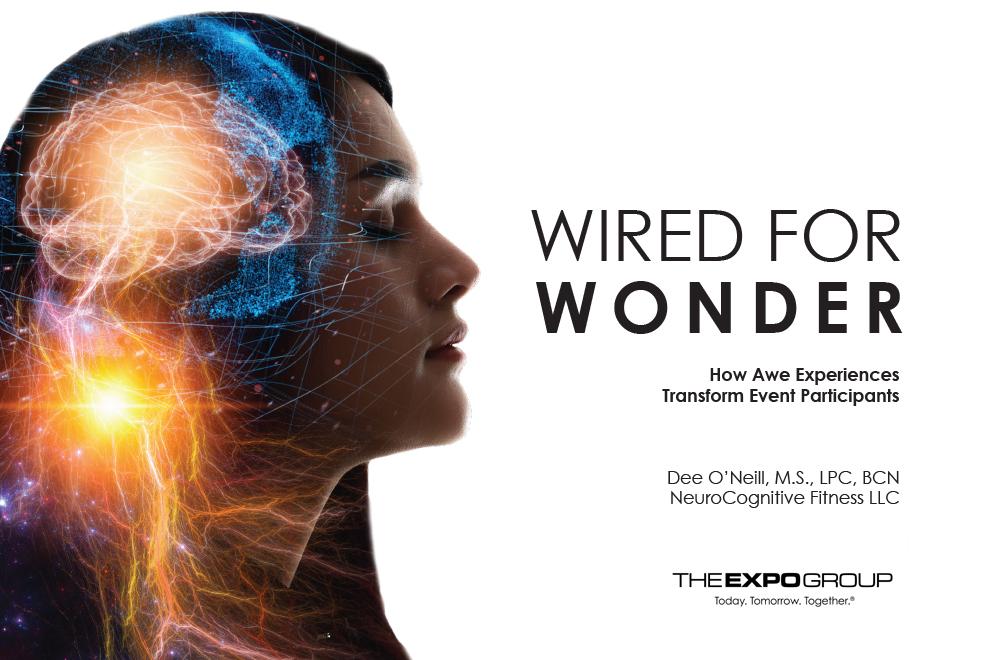 Wired for Wonder ebook